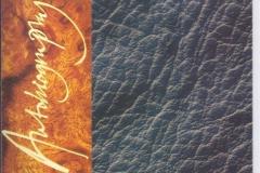 1995_Range_Rover_Autobiography_6