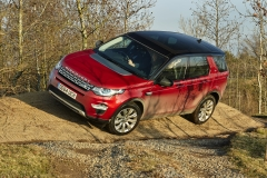 Land-Rover-Discovery-Sport-Off-road-2