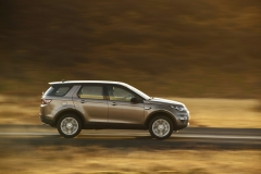 Land-Rover-Discovery-Sport-in-Iceland-Kaikoura-Stone-7